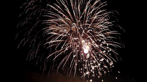 Firework Pyrotechnic Show 1