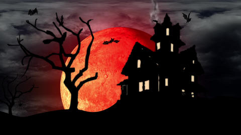 Dark House With Moon And Bats stock footage