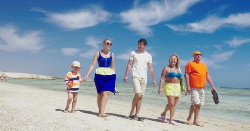 Family having enjoyable walk on the beach Live Action