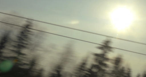 Nature scene with sun and trees, view from the train Footage
