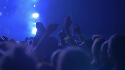 Concert Audience in Spotlights Footage