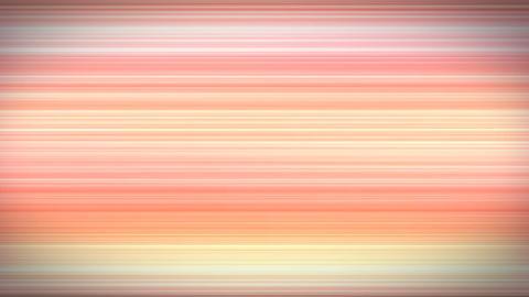 Horizontal stripes red ボーダー レッド Animation