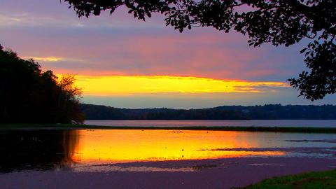 Golden sunset over cranberry bog; 7 Footage