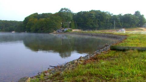 Cranberry Bog & Lake Shoreline Footage