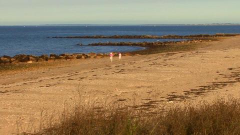 Beach Combers; 1 Footage