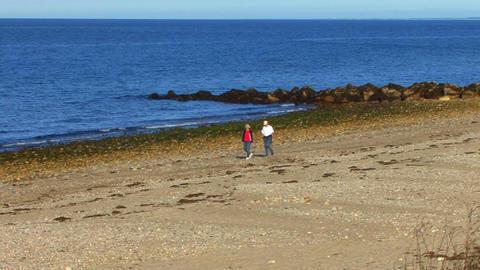 Beach Strollers Footage