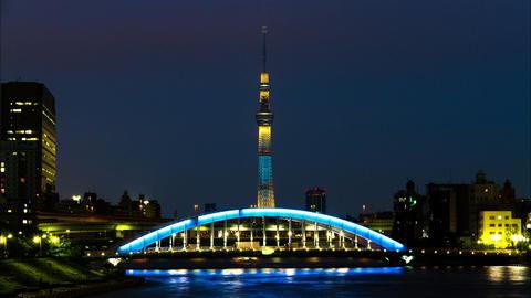 Tokyo Skytree and Eitai Bridge Tokyo, Japan Footage