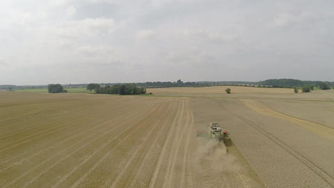 Aerial shot of a combine harvester harvesting wheat Footage