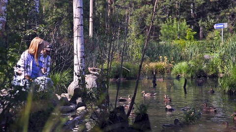 Young couple feeds ducks on a pond Footage