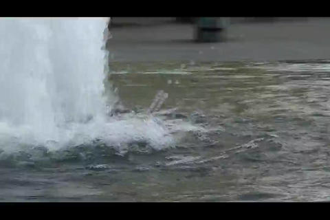 city water 3 Footage