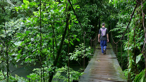 Man People Walking Trekking Hiking Hanging Bridge Jungle Rainforest Adventure Footage