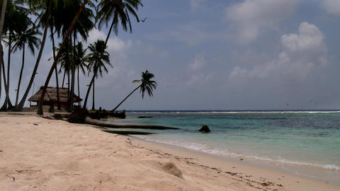 San Blas Islands Panama Sea Ocean Beach Paradise Palm Trees Footage