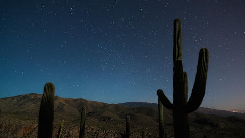 Cactus Stars Moonset 1 Live Action