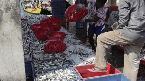 Indian Fishers On The Sea Coast India 0