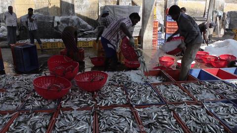 Indian Fishers On The Sea Coast India 2