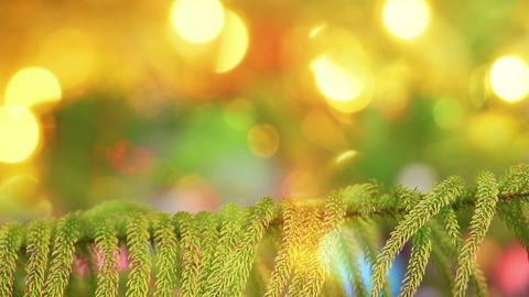 branch of fir tree and defocused christmas lights Footage