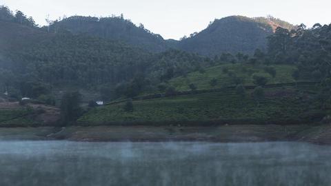 Tea plantations in Munnar, India Footage