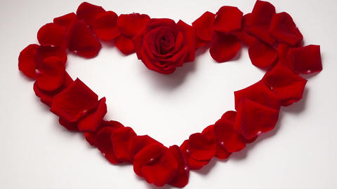 13 Valentine Day Heart Shape With Rose Petals Zoom In Footage