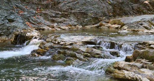 Sheshory waterfalls, Ukraine. Water flowing over rocks Footage