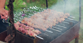 Cooking Meat Over An Open Fire, Barbecue stock footage