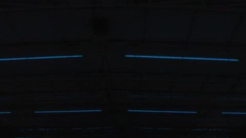light neon 02 Stock Video Footage