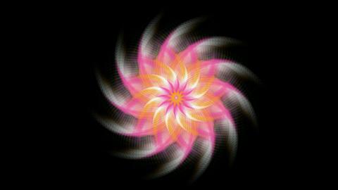 swirl fiber optic & windmill,Buddhism Mandala lotus flower fancy pattern & kaleidoscope,oriental rel Animation