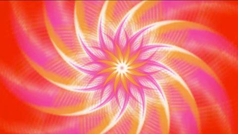 pink swirl fiber optic & windmill,Buddhism Mandala lotus... Stock Video Footage