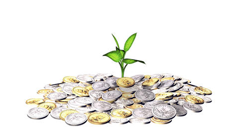 Growing plant and a lot of golden coins Stock Video Footage