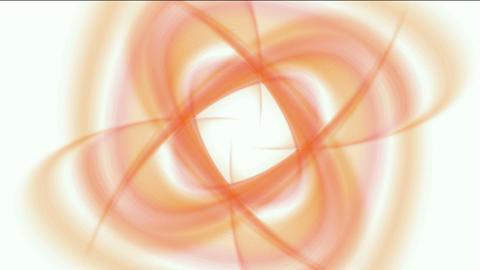 swirl smooth silk shaped flower... Stock Video Footage