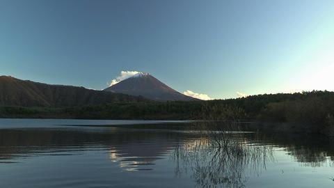 Fuji Mountain and Sai Lake,Autumn Landscape,in... Stock Video Footage