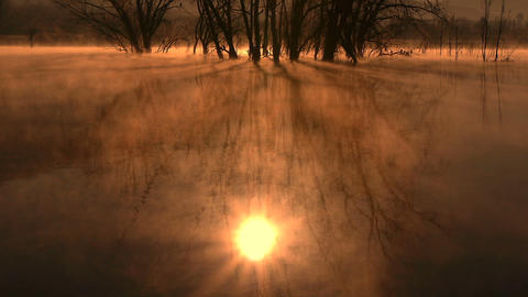 Dawn Cold In The Lagoon stock footage