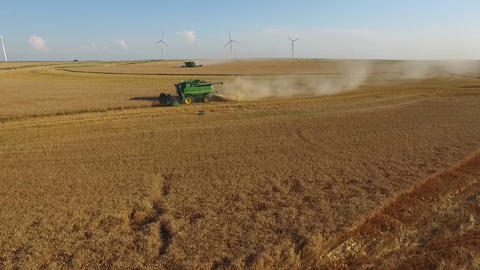 Combines Cutting Wheat Aerial Footage