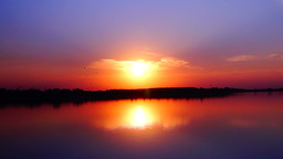 Beautiful sunset with flying birds on the lake Footage