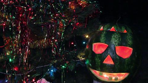 halloweens watermelon under the christmas tree Footage