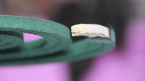 Anti Mosquito Smoke Spiral stock footage