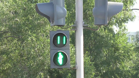 Traffic Lights For Pedestrians stock footage