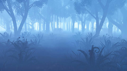 Misty night forest with fern thicket on foreground Footage