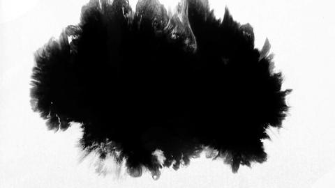Black ink drop Animation