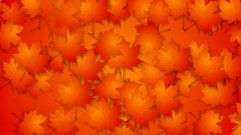 Abstract Red Orange Autumn Video Animation stock footage