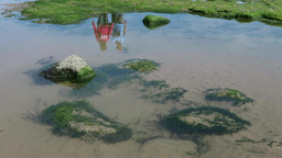 The reflection of two people is seen in water pool at seaside 影片素材