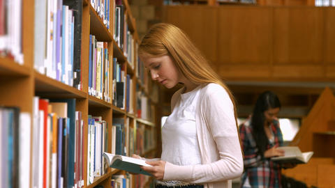 Students reading in a library Footage