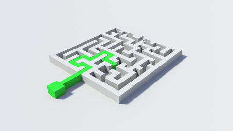 Green line solving a puzzle Animation