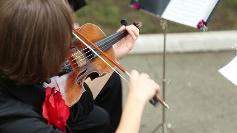 The woman musician playing the violin 画像