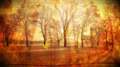 Autumn Landscape Loop stock footage