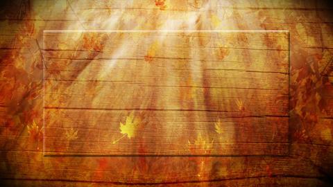 Autumn background loop Animation