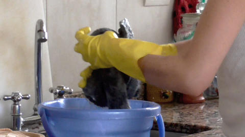 Cleaning Duties Footage