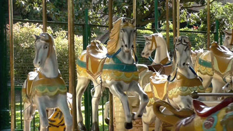Corrousel Horses , Close Up stock footage