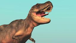 恐竜 テラノザウルス Animation