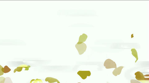 falling yellow leaves & ginkgos drops on water,reflects light & glitters of calm lake Animation