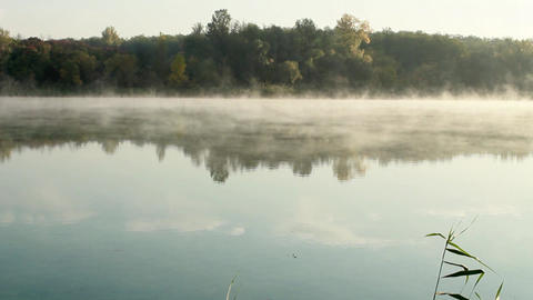 Misty morning Stock Video Footage
